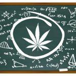 Terra Nova, Cannabis, Légalisation, France,