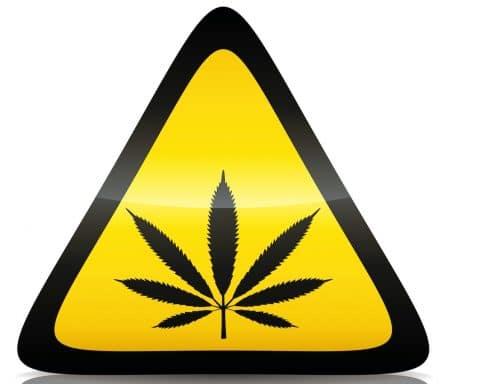 Cannabis, drogue de synthèse, danger, Europe,
