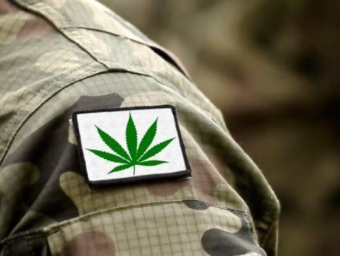Army, PTSD, Cannabis, USA,