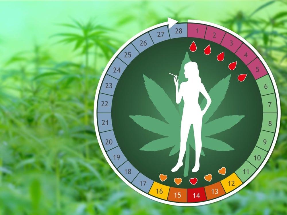 Règles, Journée de la Femme, Cannabis,