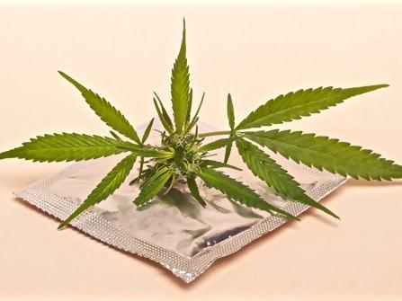 Sexe, douleurs, THC, weed, CBD, Cannabis,