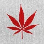 Cannabis, Addiction, THC, CBD,