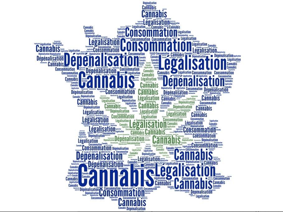 France, Légalisation Macron, Caroline Janvier,