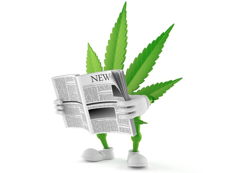 THC, CBD, information,