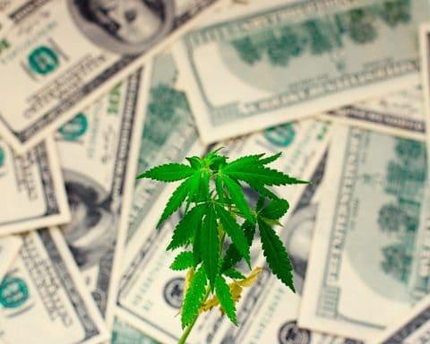 Cannabis, California, Stimulus plan,