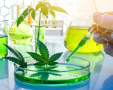 THC Delta-10, Cannabis, Weed,