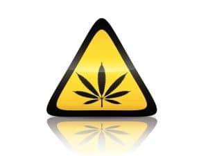 Cannabis de synthèse, MDMB-4en-PINACA, THC, Weed,