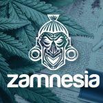 Zamnesia, Review,