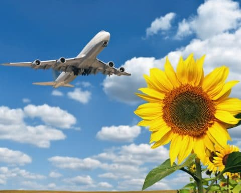 Zurich, Assurances, Avion, Bilan carbone,